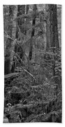 Into A Magical World Black And White Beach Towel