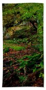 Into The Forest Of Fontainebleau Beach Towel