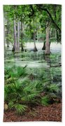 Into The Green Swamp Beach Towel