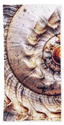 Into The Spiral Beach Towel
