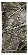 Intricately Frosted Beach Towel