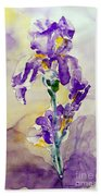Iris 2 Beach Towel