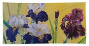 Iris Afternoon Delight Beach Towel