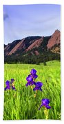 Iris And Flatirons Beach Towel