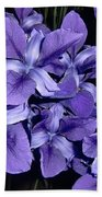 Iris At Night Beach Towel