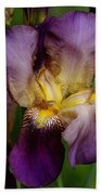 Iris Beauty Beach Towel