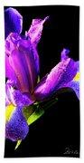 Iris Bloom One Beach Towel