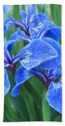 Iris Floral  Beach Towel
