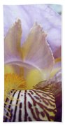 Iris Flower Art Purple Lavender Irises Giclee Prints Baslee Troutman  Beach Towel