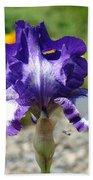 Iris Flower Purple White Irises Nature Landscape Giclee Art Prints Baslee Troutman Beach Sheet