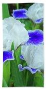 Iris Flowers Art Prints Blue White Irises Floral Baslee Troutman Beach Towel