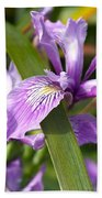 Iris Haiku Beach Towel