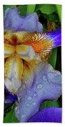 Iris Rain Blue Beach Towel