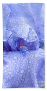 Iris Rainy Day Blue Beach Towel