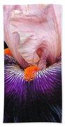 Iris Up Close Beach Towel
