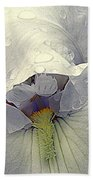 Iris With A Bonnet Series 7 Beach Towel