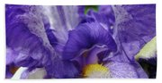 Irises Artwork Purple Iris Flowers Art Prints Canvas Baslee Troutman Beach Towel