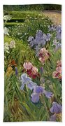 Irises At Bedfield Beach Towel