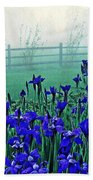 Irises At Dawn 3 Beach Towel