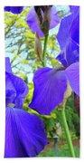 Irises Floral Garden Art Print Blue Purple Iris Flowers Baslee Troutman Beach Towel
