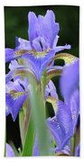 Irises Flowers Art Prints Blue Purple Iris Floral Baslee Troutman Beach Towel