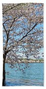 It Must Be Spring In Washington Beach Towel