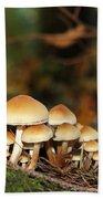 It's A Small World Mushrooms Beach Towel by Jennie Marie Schell
