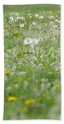 It's Dandelion Time Beach Towel