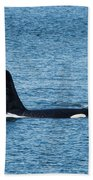 J27 Blackberry Beach Towel