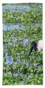 Jabiru Beach Towel