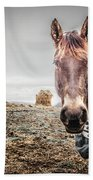 Jacketed Horse Beach Towel