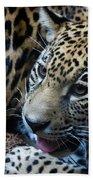 Jaguar Cub Beach Towel