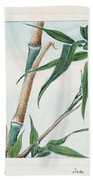 Japan: Bamboo, C1870s Beach Towel
