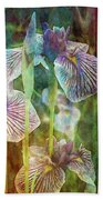 Japanese Iris Tall 2694 Idp_4 Beach Towel