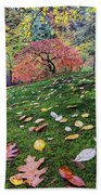 Japanese Maple Tree On A Mossy Slope Beach Towel