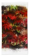 Japanese Maple Under The Willow Beach Towel