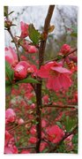 Japanese Quince Beach Towel
