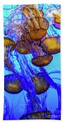 Japanese Sea Nettles Beach Towel