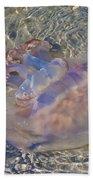 Jellyfish Beach Towel by Betsy Knapp