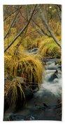 Jenny Creek In Autumn Beach Sheet