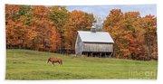 Jericho Hill Vermont Horse Barn Fall Foliage Beach Towel