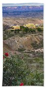 Jerome's Douglas Mansion Beach Towel
