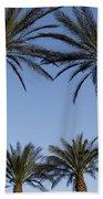 Jerusalem Palms Beach Towel