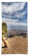 Joshua Tree 39 Beach Towel