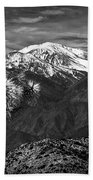Joshua Tree At Keys View In Black And White Beach Towel
