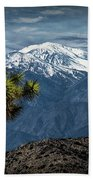 Joshua Tree At Keys View In Joshua Park National Park Beach Towel
