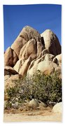 Joshua Tree Center Beach Towel