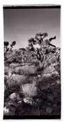 Joshua Tree Forest St George Utah Beach Towel by Steve Gadomski