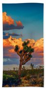 Joshua Tree In All Its Beauty Beach Towel