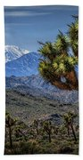 Joshua Tree In Joshua Park National Park With The Little San Bernardino Mountains In The Background Beach Towel